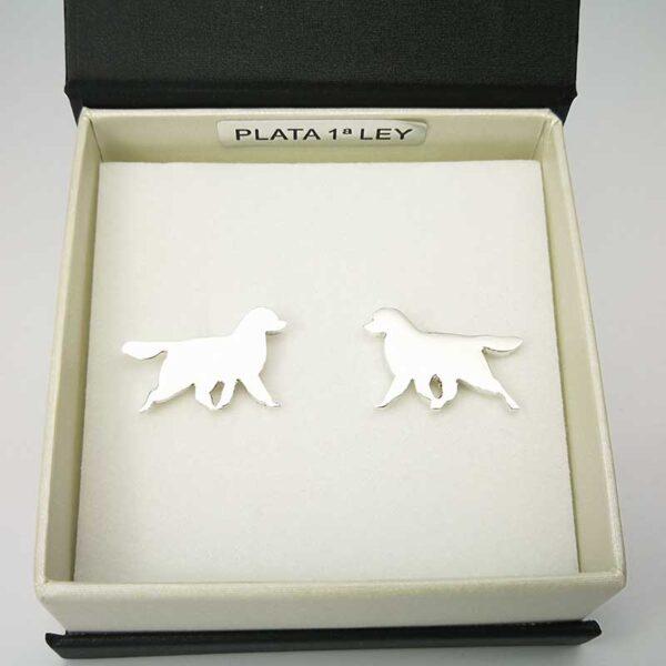 Gemelos-Plata-perro-estuche